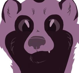 tanukis are not trash pandas