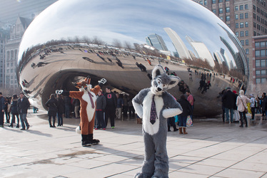 Foxes at the Cloud Gate