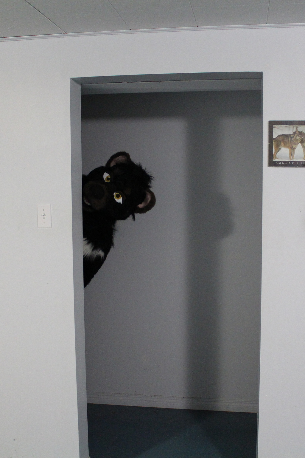 *Peeks around the corner*