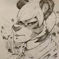 Tiger Dude