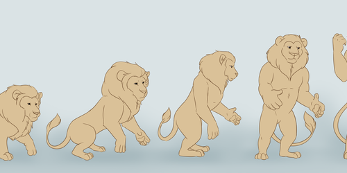 Male Lion TF