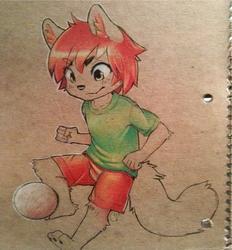 soccer fox