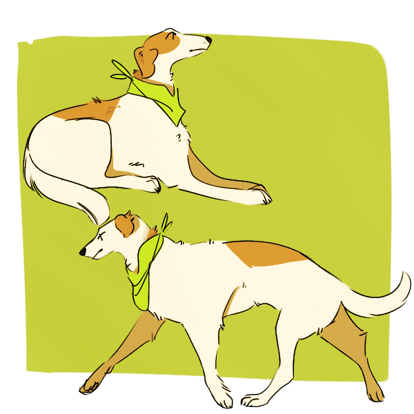 Most recent image: long dog