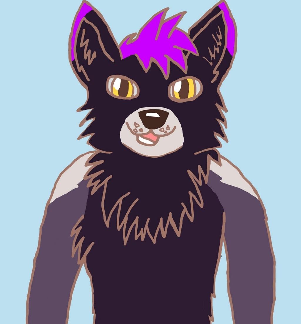Alek the Black Fox
