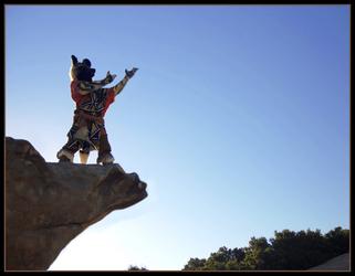 Kahini Wild Dog on a Pilgrimage 2 of 4