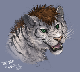 Expression study- Tiger (colab)