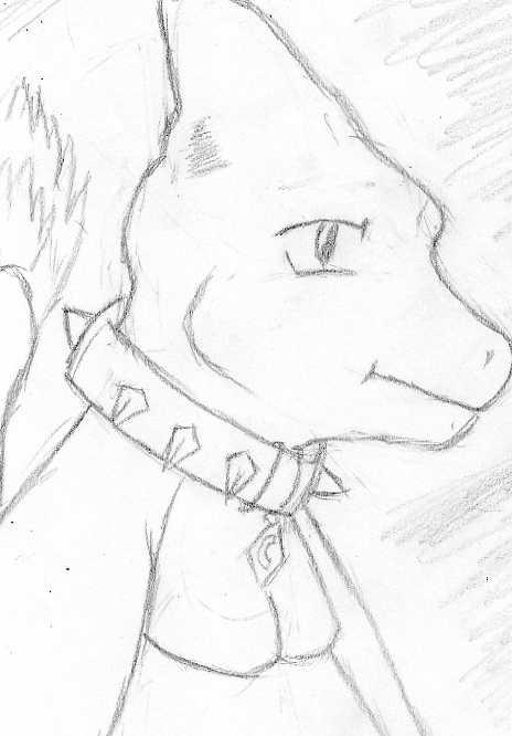 Charem Profile Sketch - by Kazumayamashita