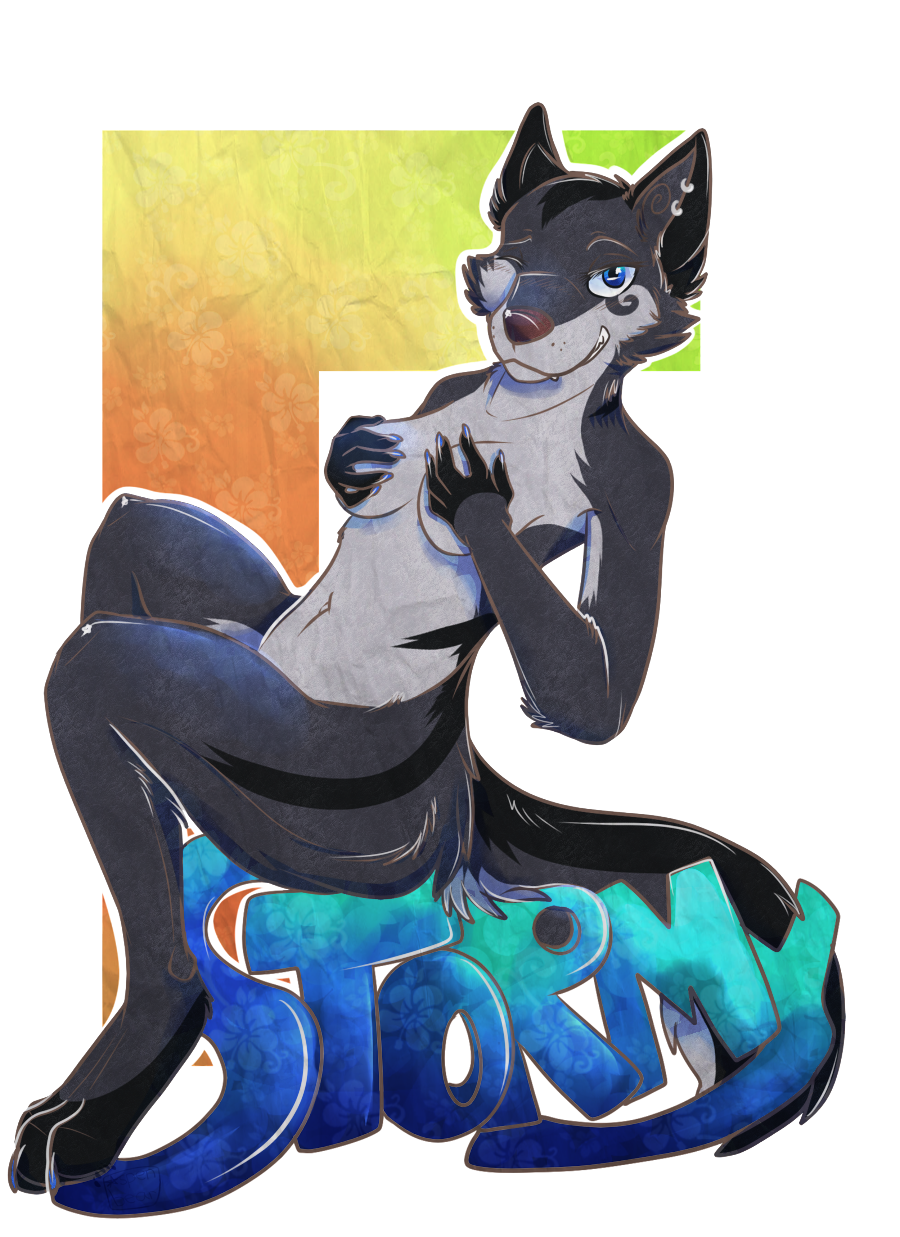 [commission] stormy9653