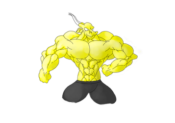 muscles.. rawr.