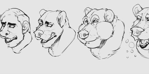 Bear Tf Anime Idea