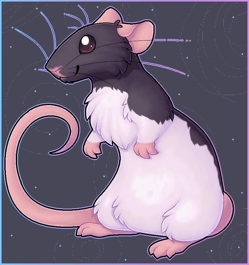 Ratty ratty rattt