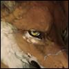 avatar of Tsu