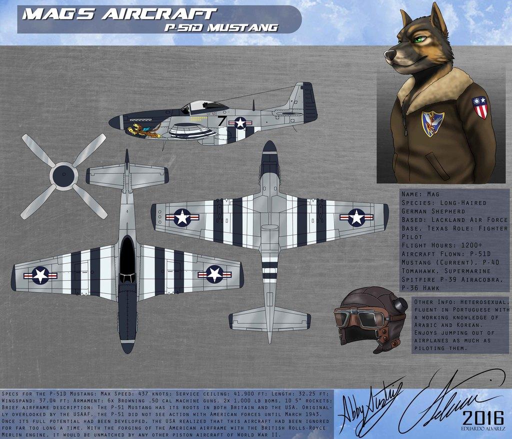 Mag Aviation Ref Sheet