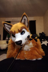 fursuitfriday :)