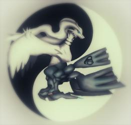 Yin yang Duo Reshiram and Zekrom