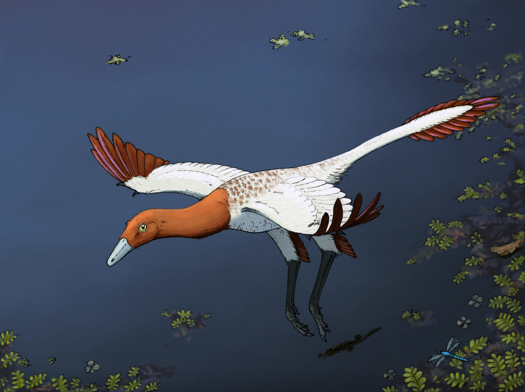 Most recent image: Flying Ornithomimosaur Commission