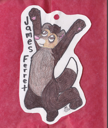 woohoo ferret badge