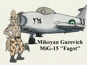 Martial Pinups: Mikoyan Gurevich MiG-15 Fagot