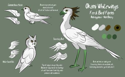 Okami Bird Forms Reference
