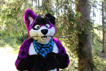 Here, I bring you another Fursuit Friday!