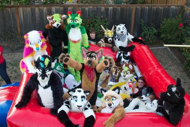 Zillions of suiters :D