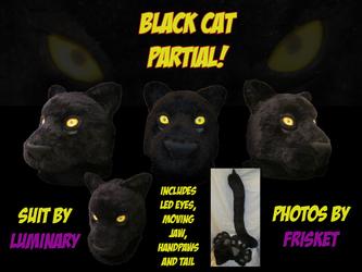~~SOLD!~~ Black Cat Partial Suit