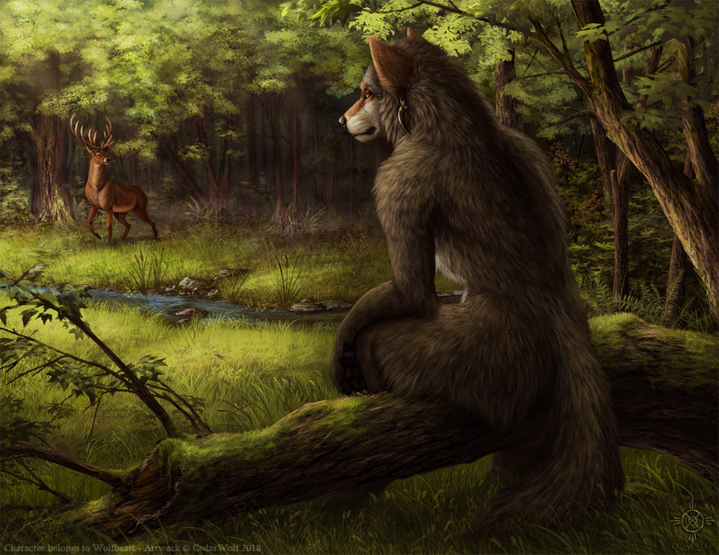 Most recent image: Summer Evening (commissioned)