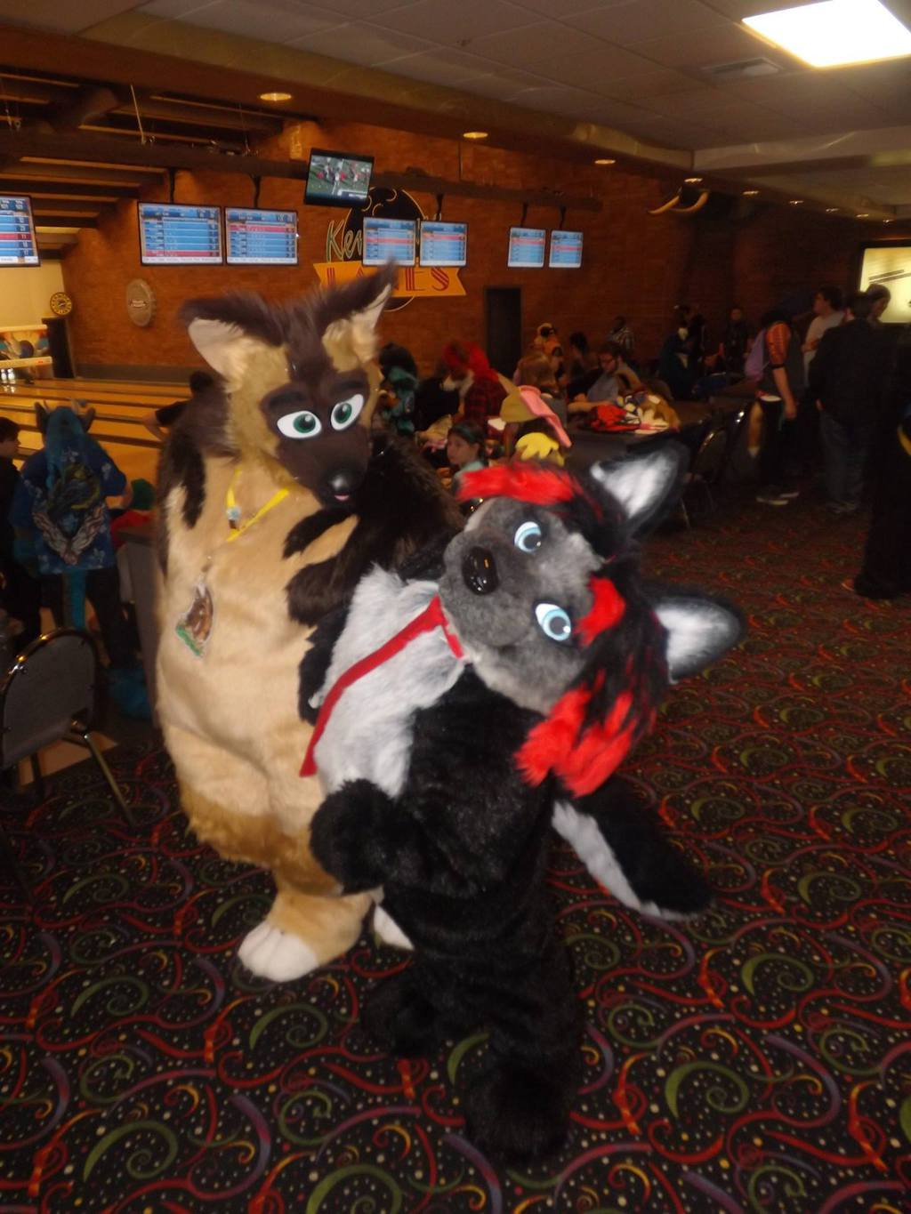 Furry Meet Pictures 14 (Part 62)