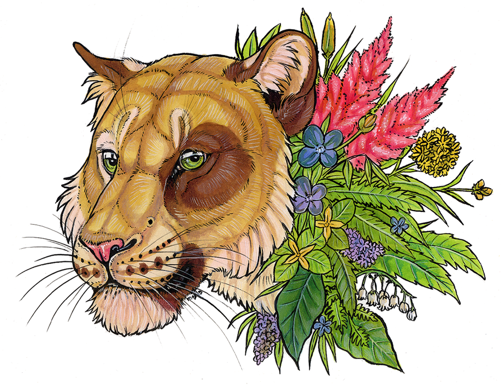 Plant spirit commission - Anyare