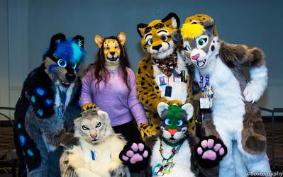 Spotcats Assemble! [ANE 2019]
