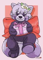 [C] Panda Plush Present