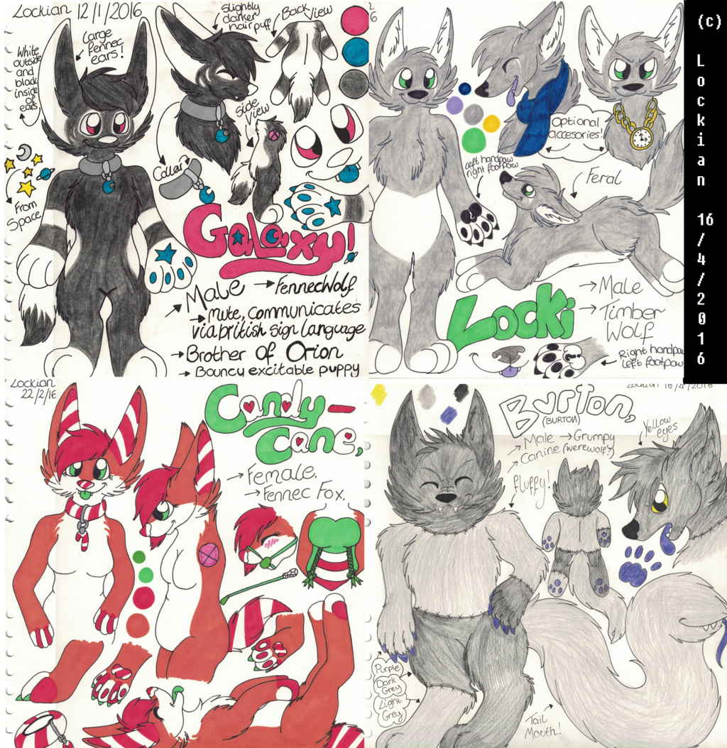 REFERENCE SHEET COLLAGE