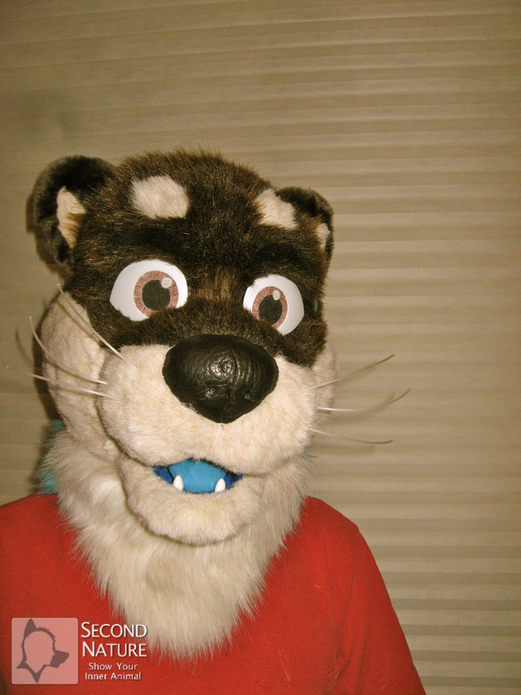 Kashmere Otter