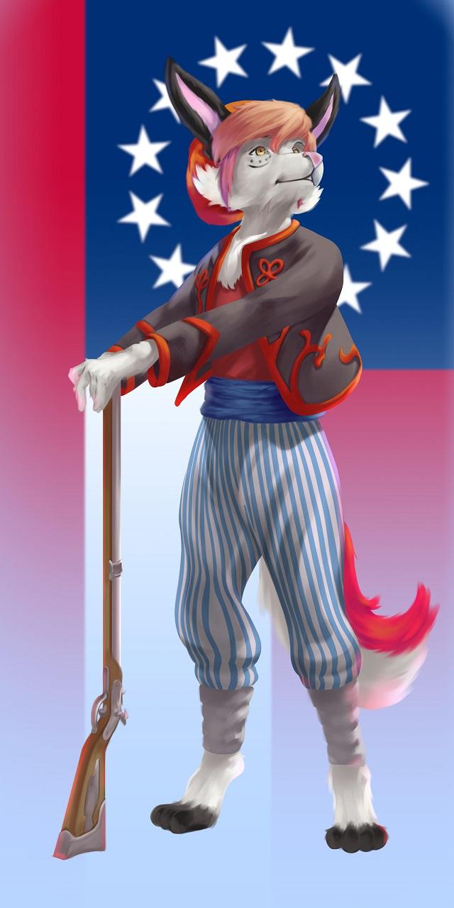 US Civil War Confederate Zouave [C]
