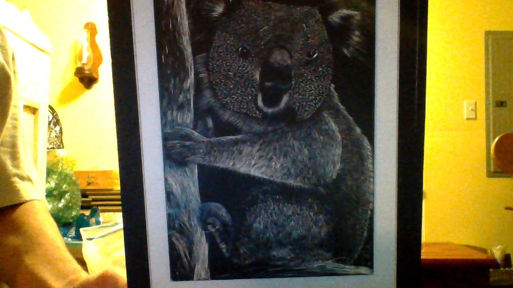 Most recent image: Koala And Bamboo