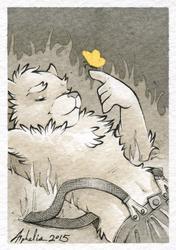 Art Card - Butterfly Bear