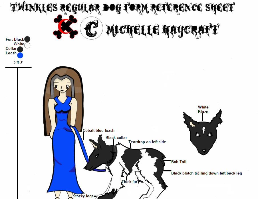 Featured image: Twinkles Regular Dog Form Reference Sheet