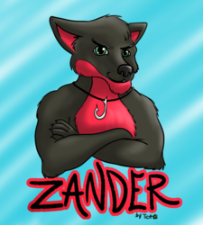 Commission: badge for Zander the wolf, RMFC 2014
