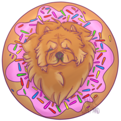 Donut Chow