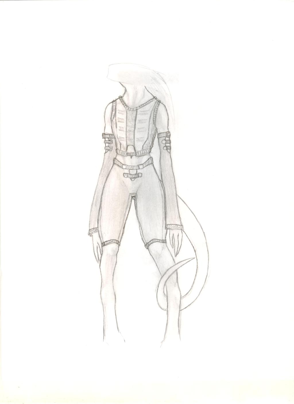 Silphen Clothing Study
