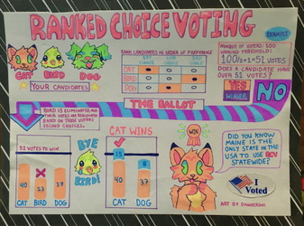 Ranked Choice Voting Infographic