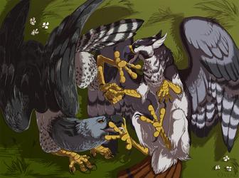 Taste of Talons