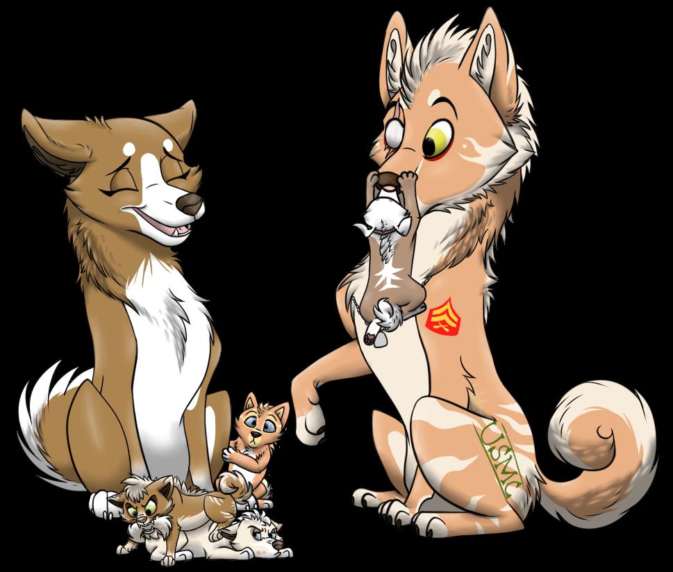 Akita Family