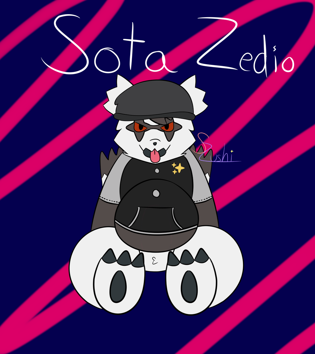 Sota Zedio - The Galar Zigzagoon