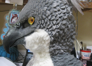 closer up on feather cut fur