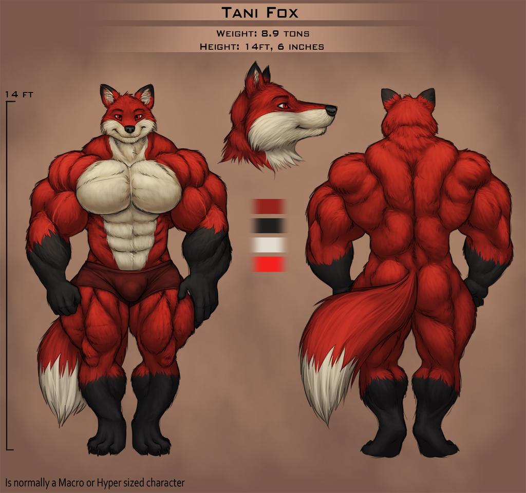 Tani Fox Ref