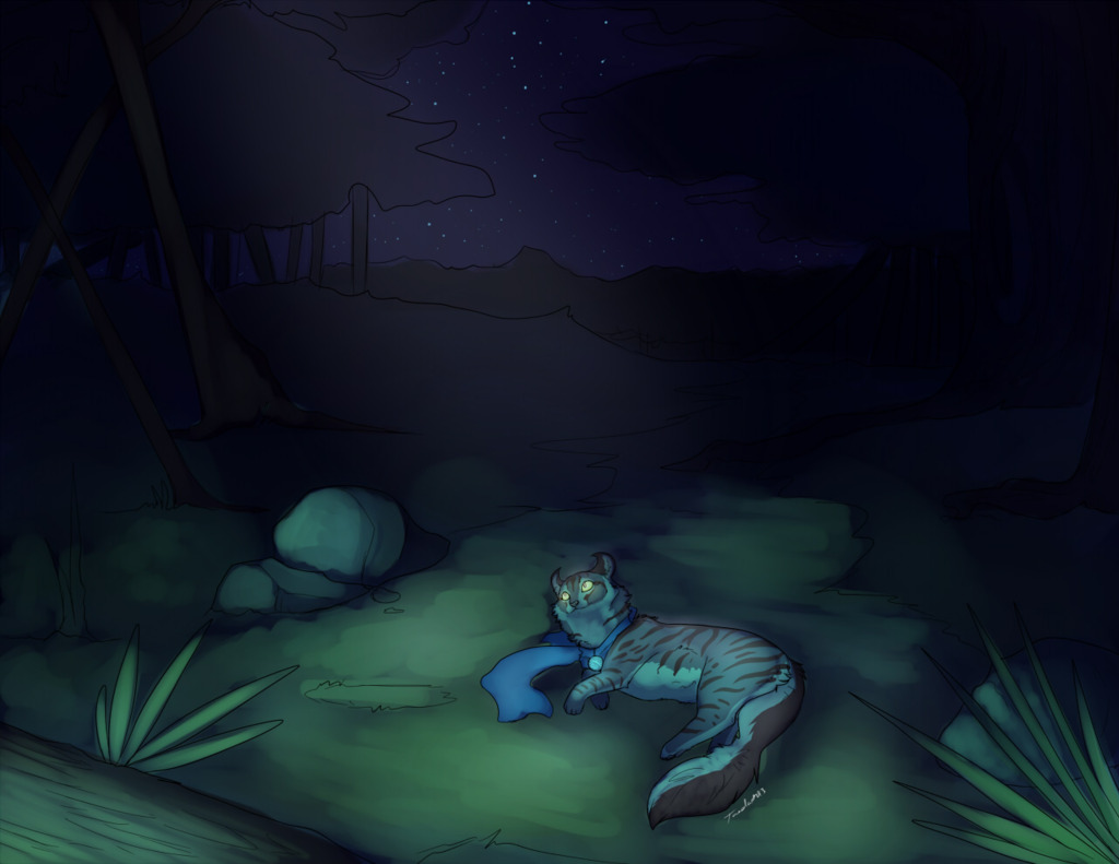 Indigo in the moonlight