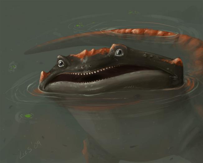 Monster Salamander