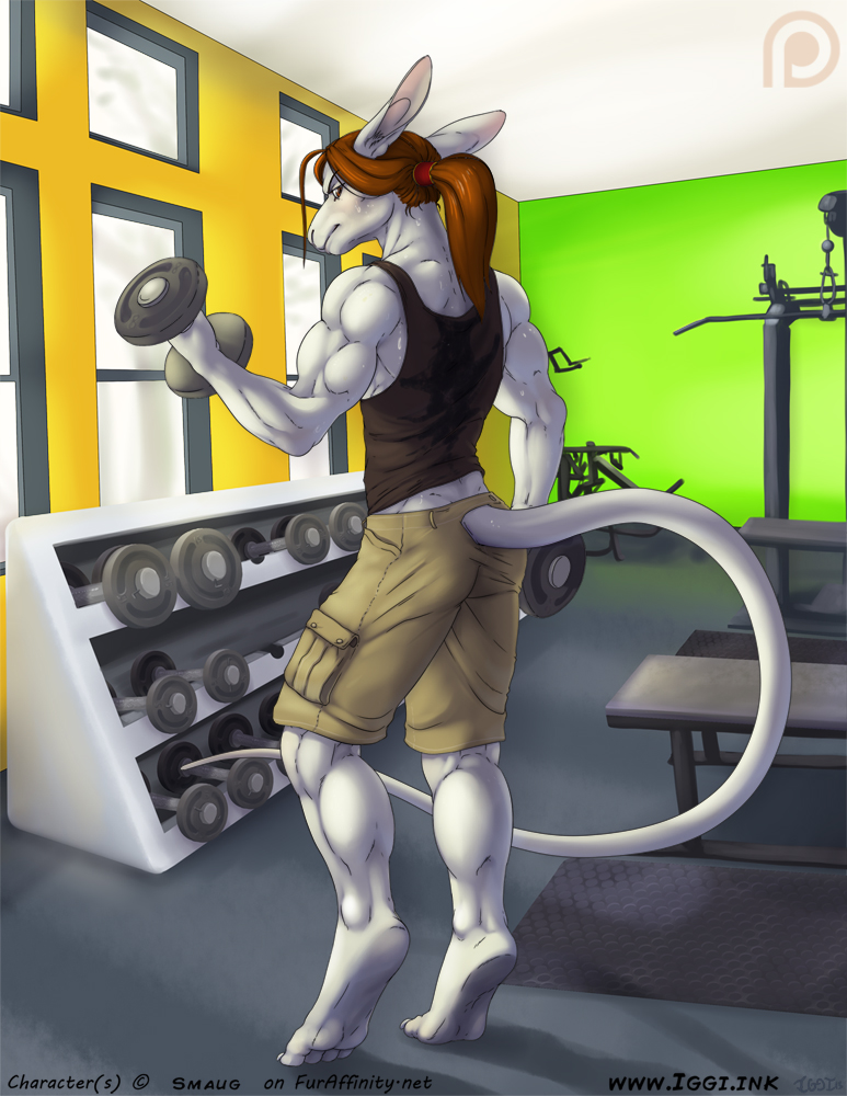 Commission: At the Gym