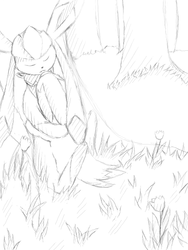 Glaceon and a Electrike